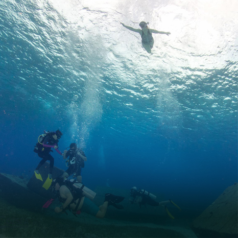 Snorkeling Among Divers